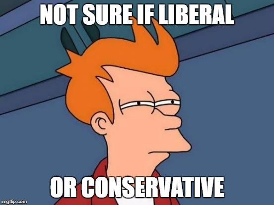 Futurama Fry Meme | NOT SURE IF LIBERAL OR CONSERVATIVE | image tagged in memes,futurama fry | made w/ Imgflip meme maker