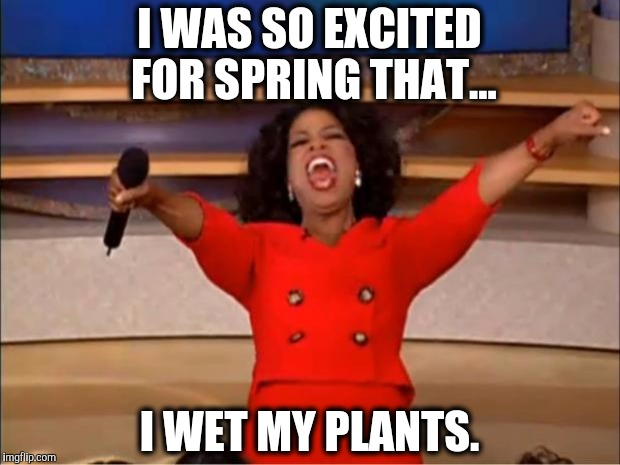 Bad puns strike again! | I WAS SO EXCITED FOR SPRING THAT... I WET MY PLANTS. | image tagged in memes,bad pun,puns,random | made w/ Imgflip meme maker