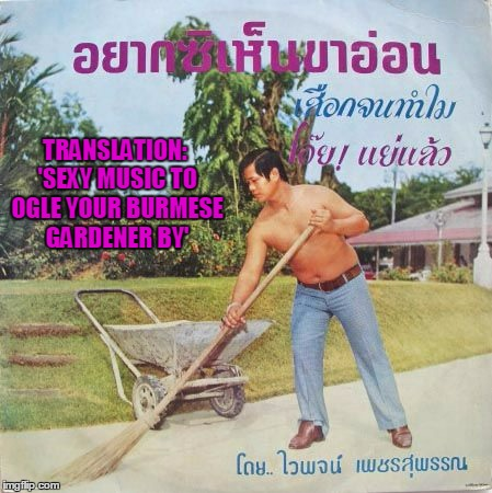 Bad Album Art Week: my last submission - thanks to all who participated, it's been a blast!  | TRANSLATION: 'SEXY MUSIC TO OGLE YOUR BURMESE GARDENER BY' | image tagged in bad album art week,bad album art,memes | made w/ Imgflip meme maker