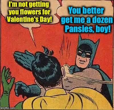 Batman Slapping Robin Meme | I'm not getting you flowers for Valentine's Day! You better get me a dozen  Pansies, boy! | image tagged in memes,batman slapping robin | made w/ Imgflip meme maker