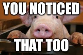 Happy pig | YOU NOTICED THAT TOO | image tagged in happy pig | made w/ Imgflip meme maker