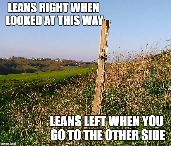 LEANS RIGHT WHEN LOOKED AT THIS WAY LEANS LEFT WHEN YOU GO TO THE OTHER SIDE | made w/ Imgflip meme maker