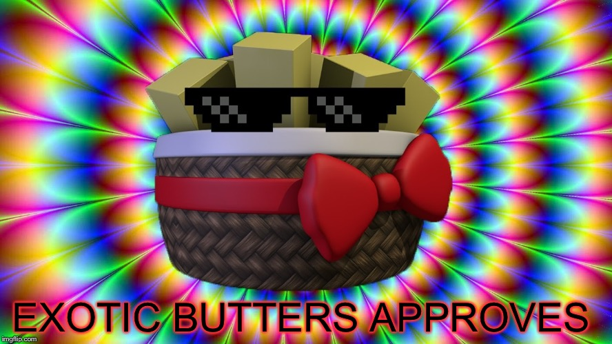 Exoticness | EXOTIC BUTTERS APPROVES | image tagged in exoticness | made w/ Imgflip meme maker