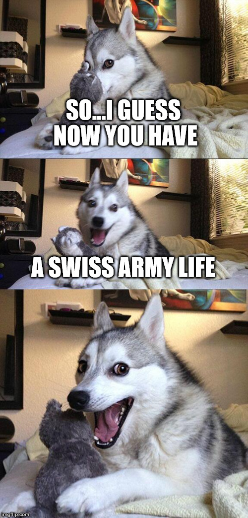 Bad Pun Dog Meme | SO...I GUESS NOW YOU HAVE A SWISS ARMY LIFE | image tagged in memes,bad pun dog | made w/ Imgflip meme maker