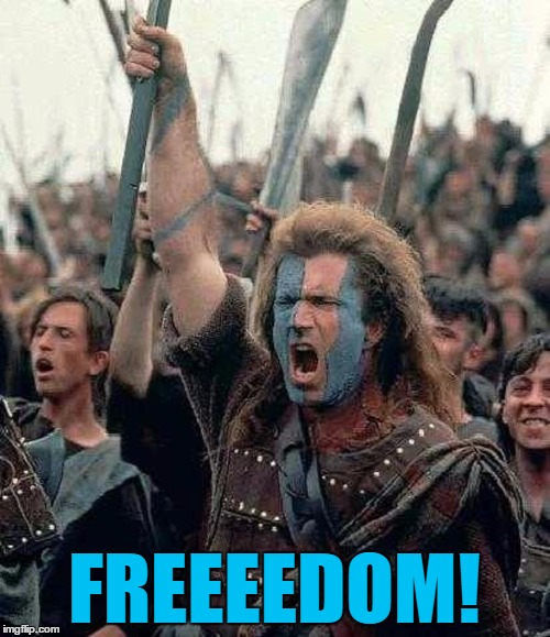 FREEEEDOM! | made w/ Imgflip meme maker