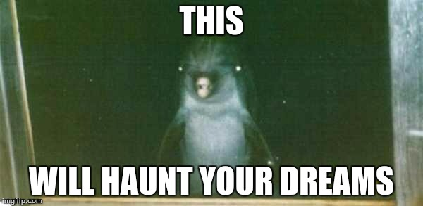 O_O | THIS WILL HAUNT YOUR DREAMS | image tagged in dolphin stare,darnkess,oh hai | made w/ Imgflip meme maker