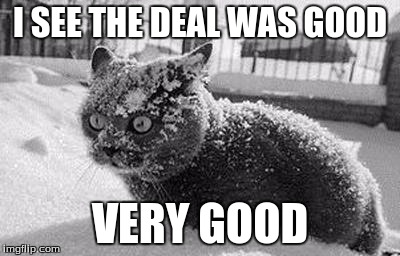 I SEE THE DEAL WAS GOOD VERY GOOD | image tagged in so much cocaine cat | made w/ Imgflip meme maker