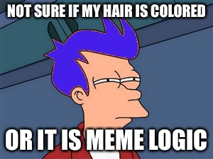 Blue Futurama Fry Meme | NOT SURE IF MY HAIR IS COLORED OR IT IS MEME LOGIC | image tagged in memes,blue futurama fry | made w/ Imgflip meme maker
