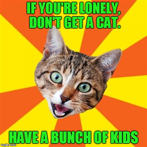 You'll be the cat's pajama's. | IF YOU'RE LONELY, DON'T GET A CAT. HAVE A BUNCH OF KIDS | image tagged in memes,bad advice cat | made w/ Imgflip meme maker