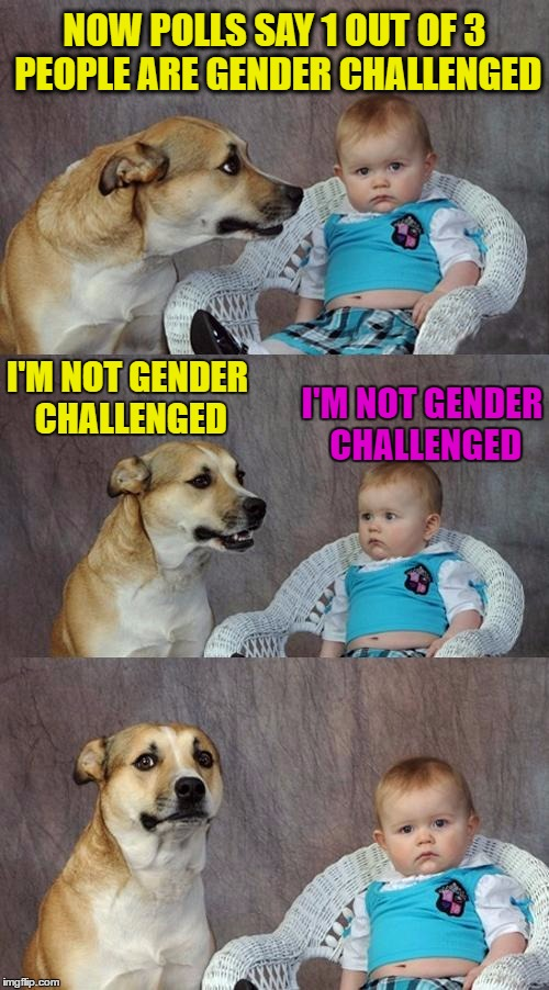 This gender thing is getting out of hand | NOW POLLS SAY 1 OUT OF 3 PEOPLE ARE GENDER CHALLENGED I'M NOT GENDER CHALLENGED I'M NOT GENDER CHALLENGED | image tagged in memes,dad joke dog,funny,gender,news,lgbt | made w/ Imgflip meme maker