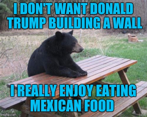 Bad Luck Bear Meme | I DON'T WANT DONALD TRUMP BUILDING A WALL I REALLY ENJOY EATING MEXICAN FOOD | image tagged in memes,bad luck bear | made w/ Imgflip meme maker