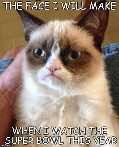 Grumpy Cat Meme | THE FACE I WILL MAKE WHEN I WATCH THE SUPER BOWL THIS YEAR | image tagged in memes,grumpy cat | made w/ Imgflip meme maker