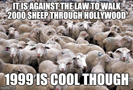 Not the most bizarre law I've seen, what's yours? | IT IS AGAINST THE LAW TO WALK 2000 SHEEP THROUGH HOLLYWOOD 1999 IS COOL THOUGH | image tagged in memes,laws,animals,sheep | made w/ Imgflip meme maker