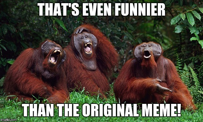 laughing orangutans | THAT'S EVEN FUNNIER THAN THE ORIGINAL MEME! | image tagged in laughing orangutans | made w/ Imgflip meme maker