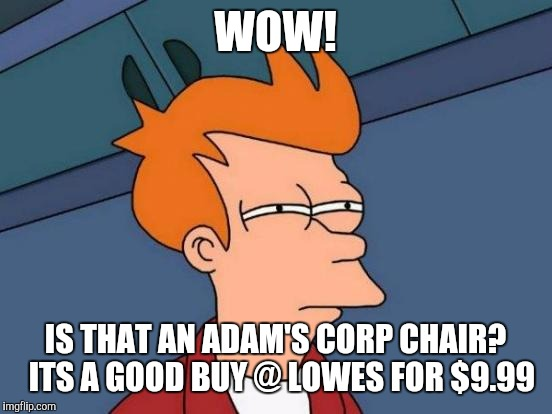 Futurama Fry Meme | WOW! IS THAT AN ADAM'S CORP CHAIR?  ITS A GOOD BUY @ LOWES FOR $9.99 | image tagged in memes,futurama fry | made w/ Imgflip meme maker