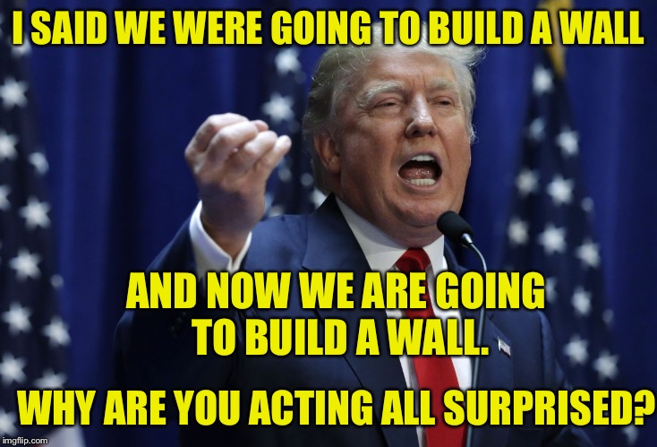 DO YOU NOT HEAR THE WORDS COMING OUT OF MY MOUTH? | I SAID WE WERE GOING TO BUILD A WALL WHY ARE YOU ACTING ALL SURPRISED? AND NOW WE ARE GOING TO BUILD A WALL. | image tagged in trump | made w/ Imgflip meme maker