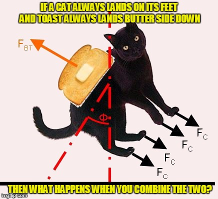 Do not tamper with sorcery | IF A CAT ALWAYS LANDS ON ITS FEET AND TOAST ALWAYS LANDS BUTTER SIDE DOWN THEN WHAT HAPPENS WHEN YOU COMBINE THE TWO? | image tagged in memes,cats,buttered toast,gravity,physics | made w/ Imgflip meme maker