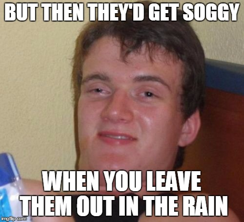 10 Guy Meme | BUT THEN THEY'D GET SOGGY WHEN YOU LEAVE THEM OUT IN THE RAIN | image tagged in memes,10 guy | made w/ Imgflip meme maker