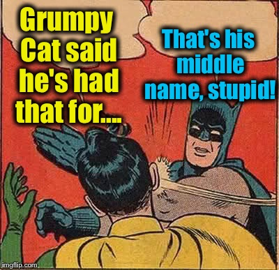 Batman Slapping Robin Meme | Grumpy Cat said he's had that for.... That's his middle name, stupid! | image tagged in memes,batman slapping robin | made w/ Imgflip meme maker