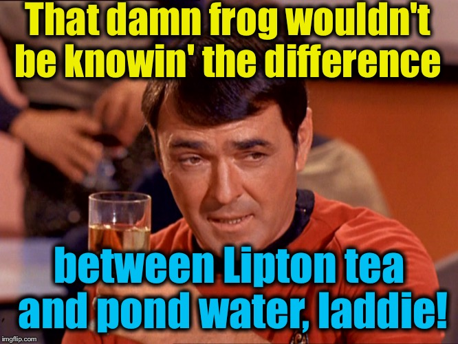 Star Trek Scotty | That damn frog wouldn't be knowin' the difference between Lipton tea and pond water, laddie! | image tagged in star trek scotty | made w/ Imgflip meme maker