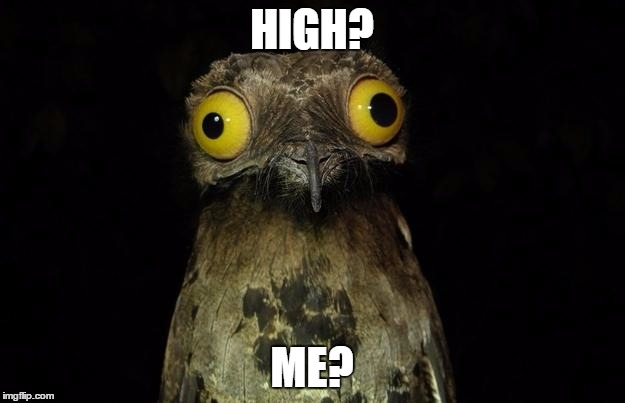 HIGH? ME? | image tagged in drugs | made w/ Imgflip meme maker