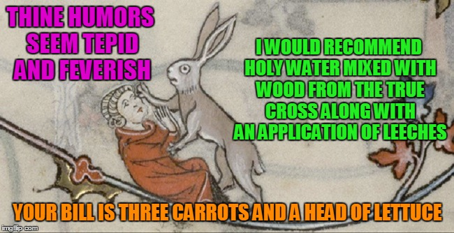 a knowledgeable and cuddly doctor is hard to find | THINE HUMORS SEEM TEPID AND FEVERISH YOUR BILL IS THREE CARROTS AND A HEAD OF LETTUCE I WOULD RECOMMEND HOLY WATER MIXED WITH WOOD FROM THE  | image tagged in medieval,medieval memes,medieval musings,memes,historical | made w/ Imgflip meme maker