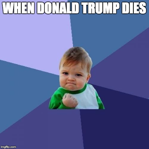 Success Kid | WHEN DONALD TRUMP DIES | image tagged in memes,success kid | made w/ Imgflip meme maker