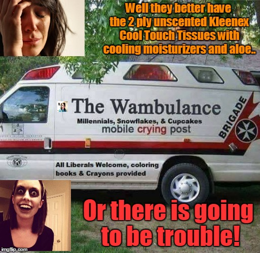 Wambulance 2 | Well they better have the 2 ply unscented Kleenex Cool Touch Tissues with cooling moisturizers and aloe.. Or there is going to be trouble! | image tagged in wambulance,kleenex,first world problems,zombie overly attached girlfriend,crazy girl | made w/ Imgflip meme maker