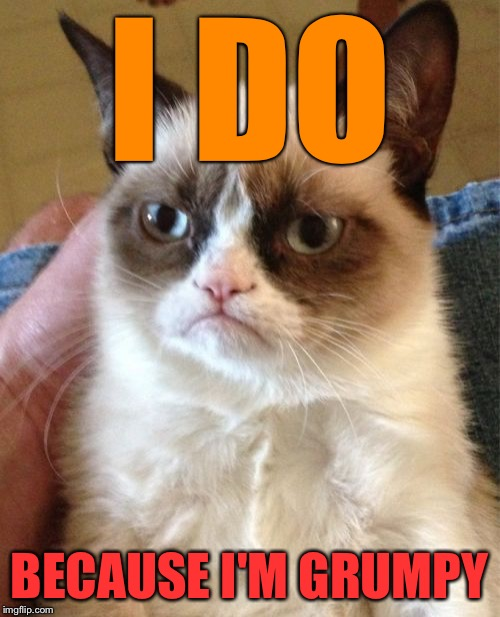 Grumpy Cat Meme | I DO BECAUSE I'M GRUMPY | image tagged in memes,grumpy cat | made w/ Imgflip meme maker