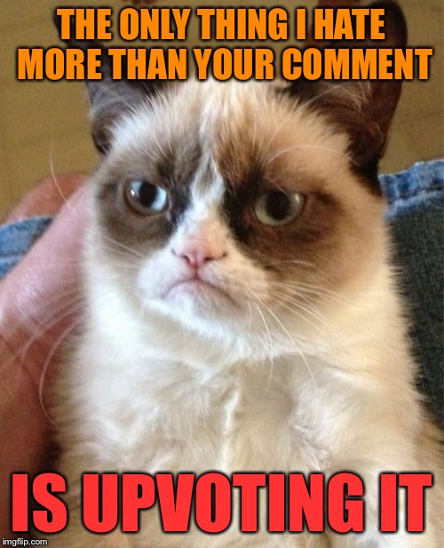 Grumpy Cat Meme | THE ONLY THING I HATE MORE THAN YOUR COMMENT IS UPVOTING IT | image tagged in memes,grumpy cat | made w/ Imgflip meme maker
