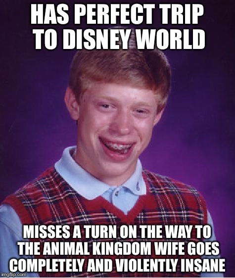Bad Luck Brian Meme | HAS PERFECT TRIP TO DISNEY WORLD MISSES A TURN ON THE WAY TO THE ANIMAL KINGDOM WIFE GOES COMPLETELY AND VIOLENTLY INSANE | image tagged in memes,bad luck brian | made w/ Imgflip meme maker
