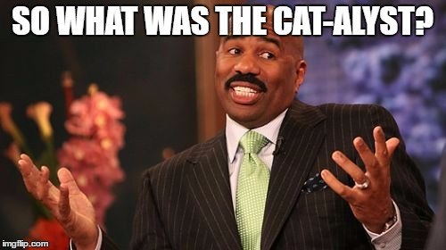 Steve Harvey Meme | SO WHAT WAS THE CAT-ALYST? | image tagged in memes,steve harvey | made w/ Imgflip meme maker