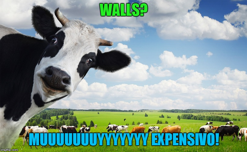WALLS? MUUUUUUUYYYYYYY EXPENSIVO! | made w/ Imgflip meme maker