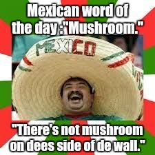 "1euwr4.jpg | Mexican word of the day :""Mushroom."" ""There's not mushroom on dees side of de wall."" 