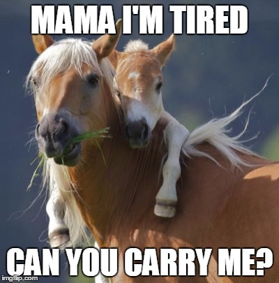 Foal Of Mine | MAMA I'M TIRED CAN YOU CARRY ME? | image tagged in memes,foal of mine | made w/ Imgflip meme maker