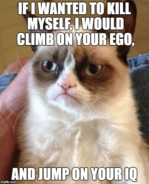 Grumpy Cat Meme | IF I WANTED TO KILL MYSELF, I WOULD CLIMB ON YOUR EGO, AND JUMP ON YOUR IQ | image tagged in memes,grumpy cat | made w/ Imgflip meme maker
