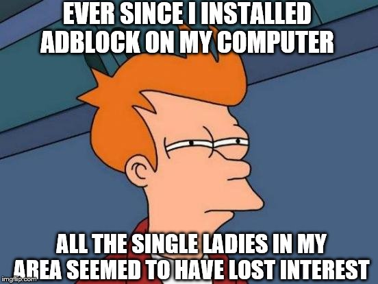 Futurama Fry Meme | EVER SINCE I INSTALLED ADBLOCK ON MY COMPUTER ALL THE SINGLE LADIES IN MY AREA SEEMED TO HAVE LOST INTEREST | image tagged in memes,futurama fry | made w/ Imgflip meme maker