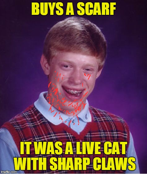 Bad Luck Brian Meme | BUYS A SCARF IT WAS A LIVE CAT WITH SHARP CLAWS | image tagged in memes,bad luck brian | made w/ Imgflip meme maker