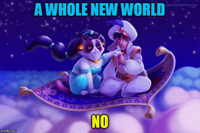 A WHOLE NEW WORLD NO | made w/ Imgflip meme maker