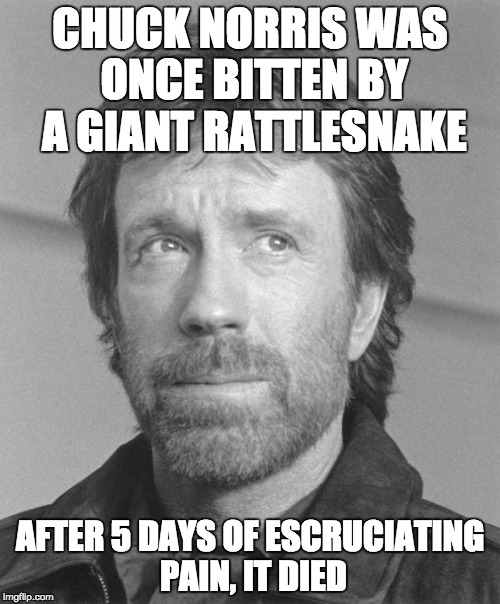 chuck norris BW | CHUCK NORRIS WAS ONCE BITTEN BY A GIANT RATTLESNAKE AFTER 5 DAYS OF ESCRUCIATING PAIN, IT DIED | image tagged in chuck norris bw,memes,funny,chuck norris | made w/ Imgflip meme maker