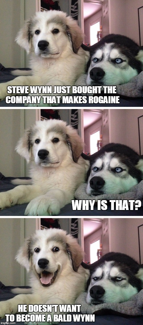 Dog bad joke | STEVE WYNN JUST BOUGHT THE COMPANY THAT MAKES ROGAINE HE DOESN'T WANT TO BECOME A BALD WYNN WHY IS THAT? | image tagged in dog bad joke,baldwin,bald,baldness | made w/ Imgflip meme maker