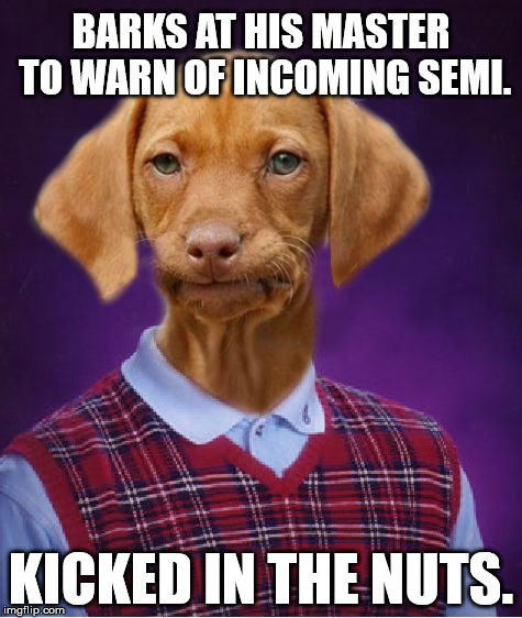 Bad Luck Dog | BARKS AT HIS MASTER TO WARN OF INCOMING SEMI. KICKED IN THE NUTS. | image tagged in bad luck dog | made w/ Imgflip meme maker