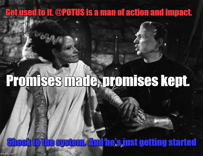 Promises Made, Promises kept Shock to the system | Get used to it. @POTUS is a man of action and impact. Shock to the system.  And he's just getting started Promises made, promises kept. | image tagged in bride of trumpenstein,kellyanne conway,trump,promises,shock,just getting started | made w/ Imgflip meme maker
