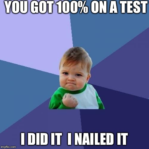 Success Kid Meme | YOU GOT 100% ON A TEST I DID IT  I NAILED IT | image tagged in memes,success kid | made w/ Imgflip meme maker