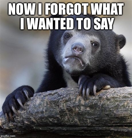 Confession Bear Meme | NOW I FORGOT WHAT I WANTED TO SAY | image tagged in memes,confession bear | made w/ Imgflip meme maker
