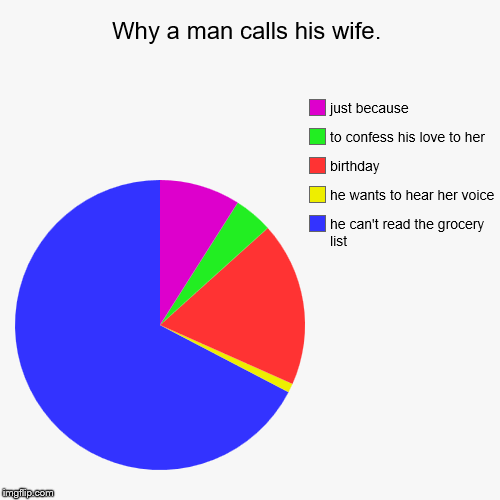 Why a man calls his wife. | he can't read the grocery list, he wants to hear her voice, birthday, to confess his love to her, just because | image tagged in funny,pie charts | made w/ Imgflip pie chart maker