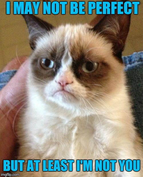 Grumpy Cat Meme | I MAY NOT BE PERFECT BUT AT LEAST I'M NOT YOU | image tagged in memes,grumpy cat | made w/ Imgflip meme maker