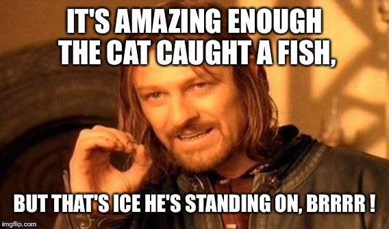 One Does Not Simply Meme | IT'S AMAZING ENOUGH THE CAT CAUGHT A FISH, BUT THAT'S ICE HE'S STANDING ON, BRRRR ! | image tagged in memes,one does not simply | made w/ Imgflip meme maker