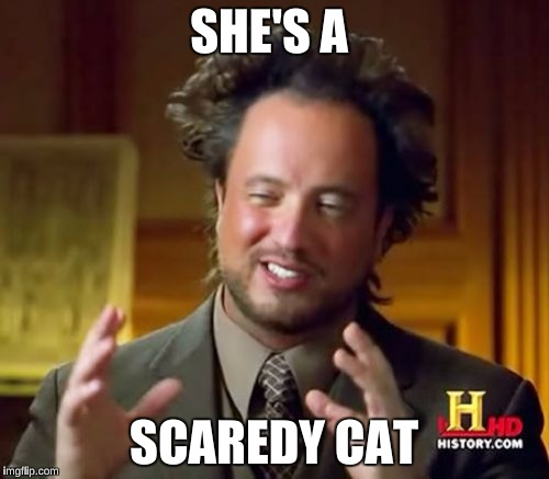 Ancient Aliens Meme | SHE'S A SCAREDY CAT | image tagged in memes,ancient aliens | made w/ Imgflip meme maker