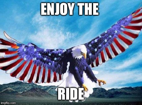 Freedom eagle | ENJOY THE RIDE | image tagged in freedom eagle | made w/ Imgflip meme maker